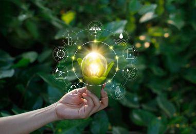 Экологически рациональное развитие бизнеса: адаптация, позволяющая выжить